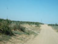 قرية الغولاء